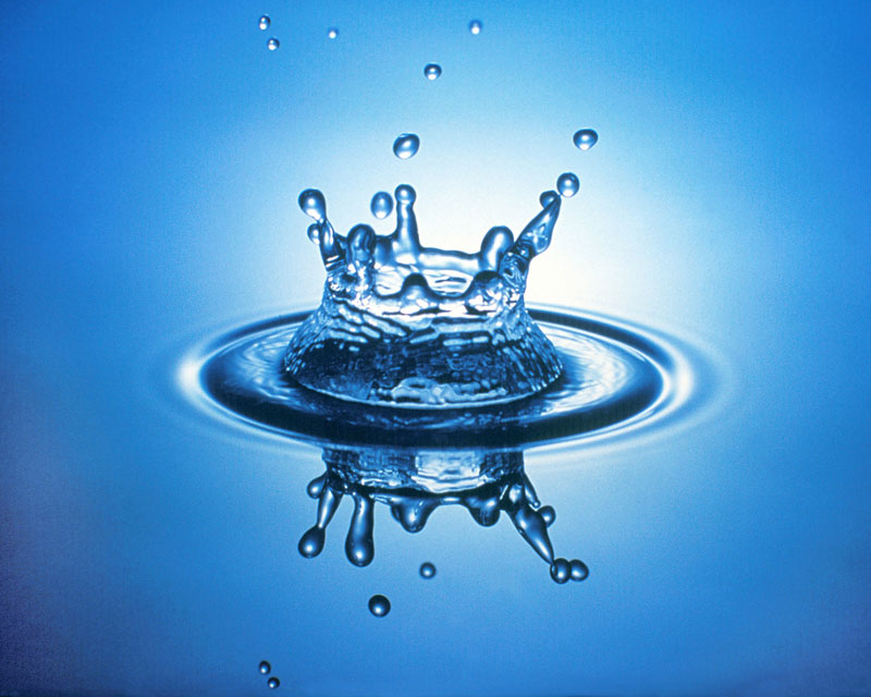 supervivencia encontarndo agua